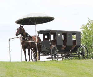 Amish Limousine