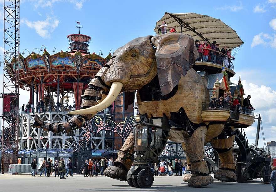 elephant limo
