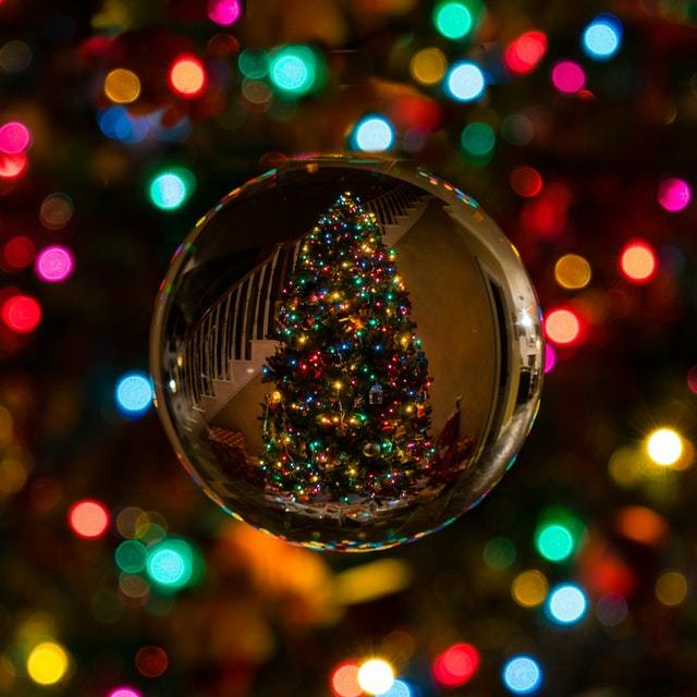 Where to Find the Best Christmas Trees in New Jersey State